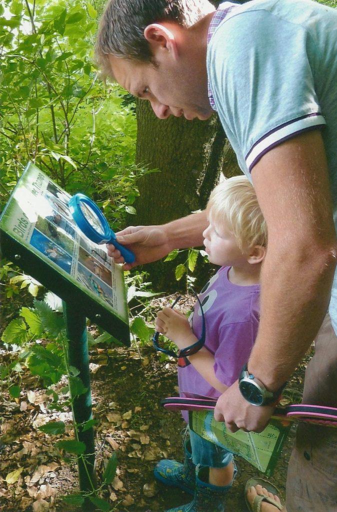 looking at map