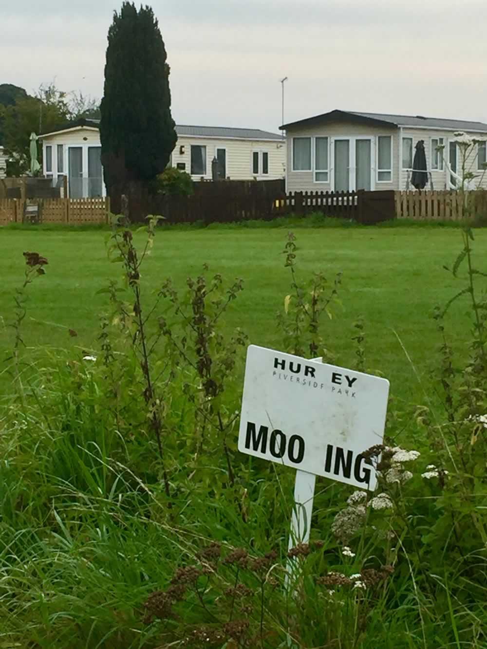garden with mooring sign